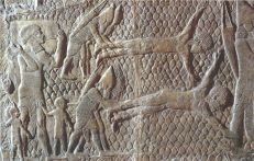 Victims of Assyrian armies were often tortured to death, here by flaying. The skins were then mounted for display on the walls of the conquered city.